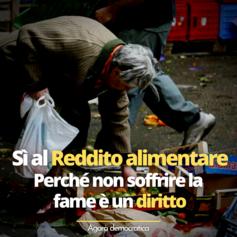Reddito alimentare card.png