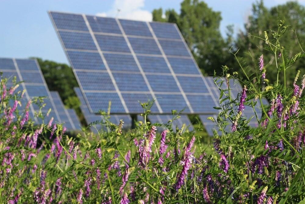 Quale Fotovoltaico per la transizione energetica